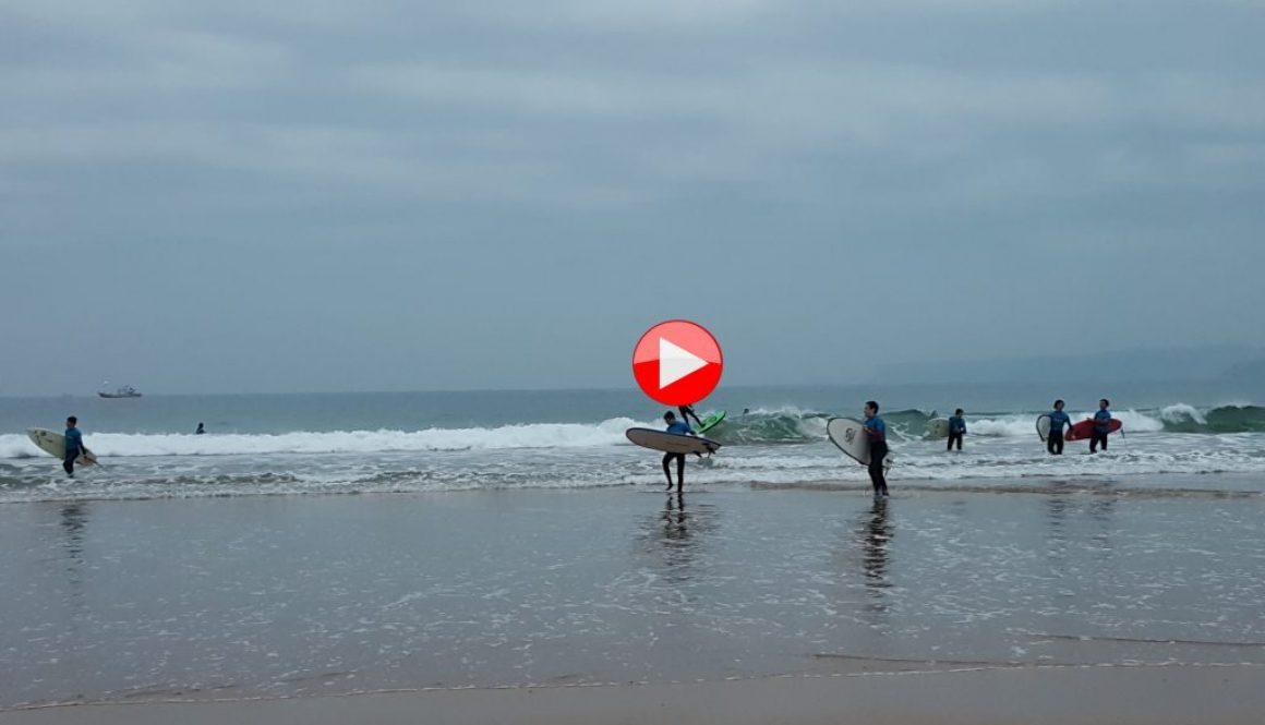 SURF SARDINERO